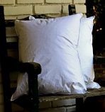 Gotcha Covered Angel Soft Pillow
